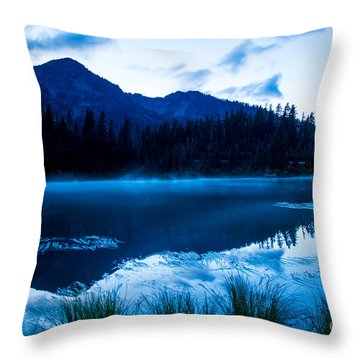 Picture Lake 3 Throw Pillow