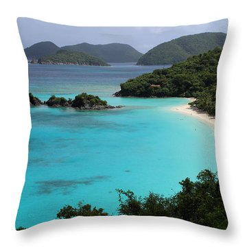 Piece Of Paradise Throw Pillow by Fiona Kennard