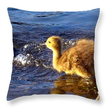 Pied Piper Throw Pillow