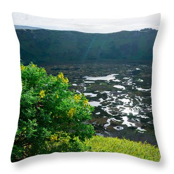 Piercing Sunlight Throw Pillow