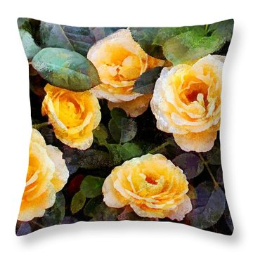 Pierre's Peach Roses Throw Pillow