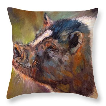 Pig Throw Pillow by David Stribbling