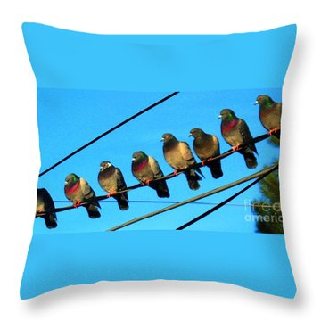 Pigeon Beauty Pageant  Throw Pillow