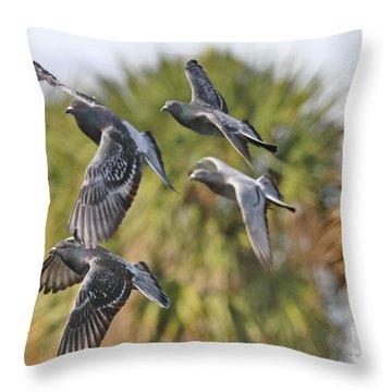 Pigeon Brigade Throw Pillow by Deborah Benoit