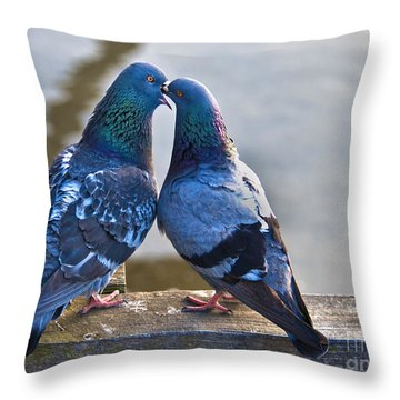 Pigeon Kissing Throw Pillow