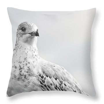 Pigeon Pride II Throw Pillow