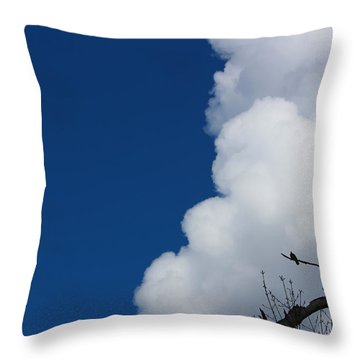 Pigeons Follow Clouds Throw Pillow by Kym Backland