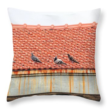 Pigeons On Roof Throw Pillow by Aaron Martens