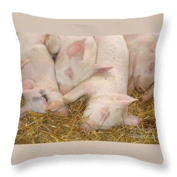 Piggy Feet In Face Throw Pillow