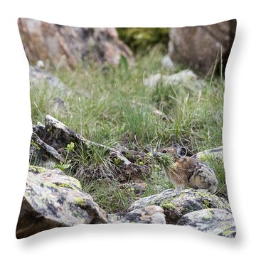 Pika  Throw Pillow
