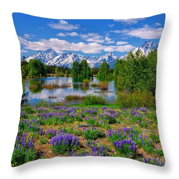 Pilgrim Creek Wildflowers Throw Pillow