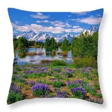 Pilgrim Creek Wildflowers Throw Pillow by Greg Norrell