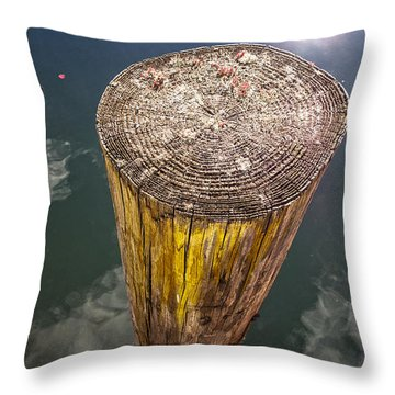 Piling Throw Pillow by David Stone