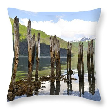 Throw Pillow featuring the photograph Pilings by Cathy Mahnke