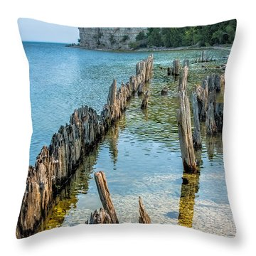 Pilings On Lake Michigan Throw Pillow by Paul Freidlund