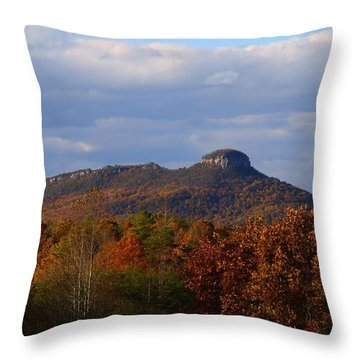 Pilot From Perch Road Throw Pillow by Kathryn Meyer