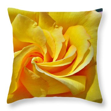 Pimp My Rose  Throw Pillow by Steve Taylor
