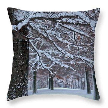 Throw Pillow featuring the photograph Pin Oak Snow by Ann Murphy