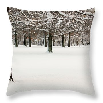Pin Oaks Covered In Snow Throw Pillow by Ann Murphy