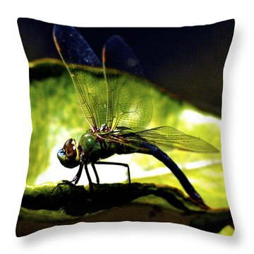 Pinao The Hawaiian Dragonfly Throw Pillow
