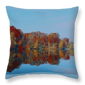 Pinchot 4 Throw Pillow