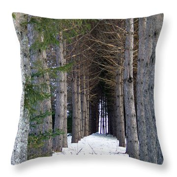 Pine Cathedral Throw Pillow