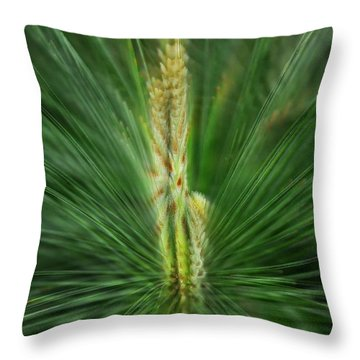 Pine Cone And Needles Throw Pillow