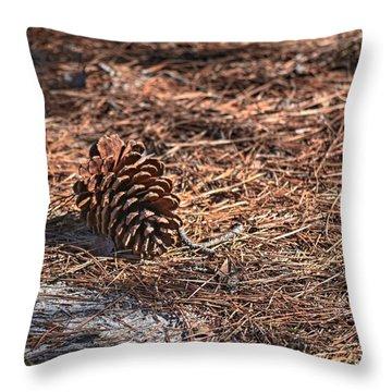 Pine Cone Throw Pillow by Cathy Jourdan