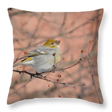 Throw Pillow featuring the photograph Pine Grosbeak by James Petersen