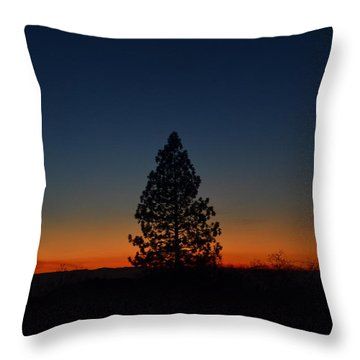 Pine In The Prism Throw Pillow by Tom Mansfield