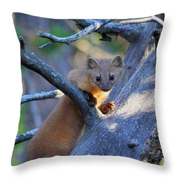 Pine Martin Throw Pillow