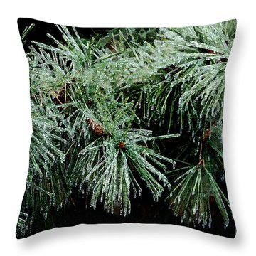 Pine Needles In Ice Throw Pillow by Betty LaRue