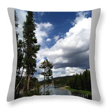 Throw Pillow featuring the photograph Pine On The Yellowstone River by Charles Robinson