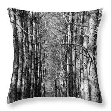 Pine Plantation Throw Pillow