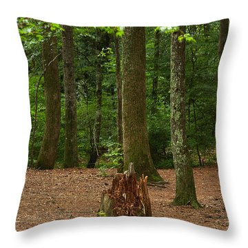 Pine Stump Throw Pillow