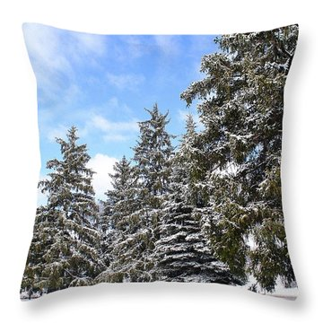 Pine Tree Haven Throw Pillow by Frozen in Time Fine Art Photography