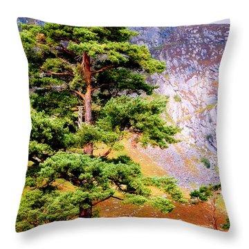 Pine Tree In Wicklow Hills. Ireland Throw Pillow by Jenny Rainbow