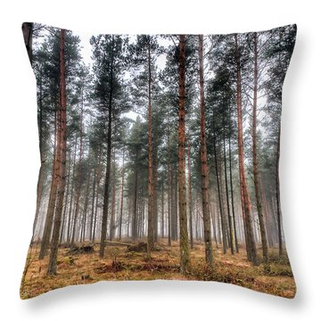 Pine Trees In Morning Fog Throw Pillow by EXparte SE
