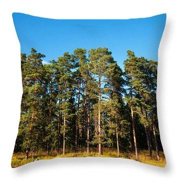 Pine Trees Of Valaam Island Throw Pillow by Jenny Rainbow