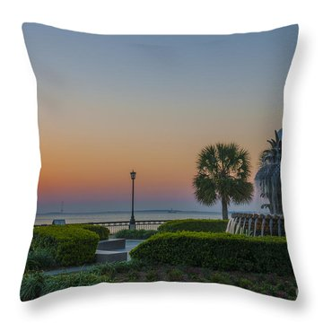 Dawns Light Throw Pillow by Dale Powell