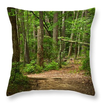 Pinewood Path Throw Pillow