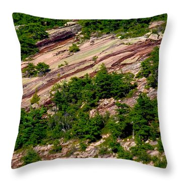 Pink Acadia 8103 Throw Pillow by Brent L Ander