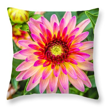 Pink And Purple Blooms Throw Pillow