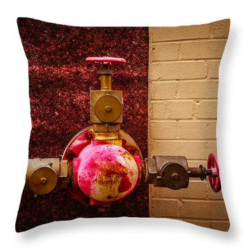 Pink And Rusted Throw Pillow