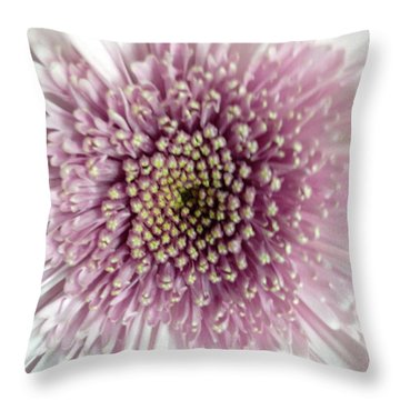 Pink And White Chrysanthemum Throw Pillow