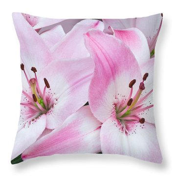 Pink And White Lilies Throw Pillow by Jane McIlroy