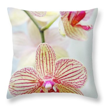 Pink And White Orchids Throw Pillow
