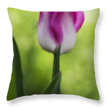 Pink And White Tulip Throw Pillow by Shelly Gunderson