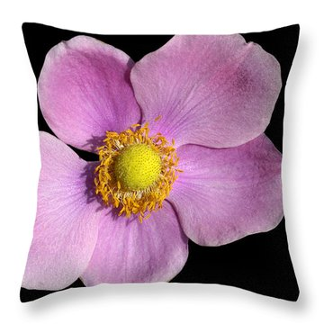 Pink Anemone Throw Pillow by Matthias Hauser