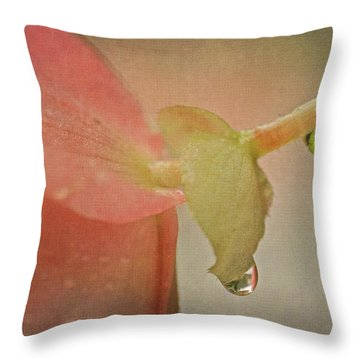 Throw Pillow featuring the photograph Pink Begonia And Water Drops by Peggy Collins